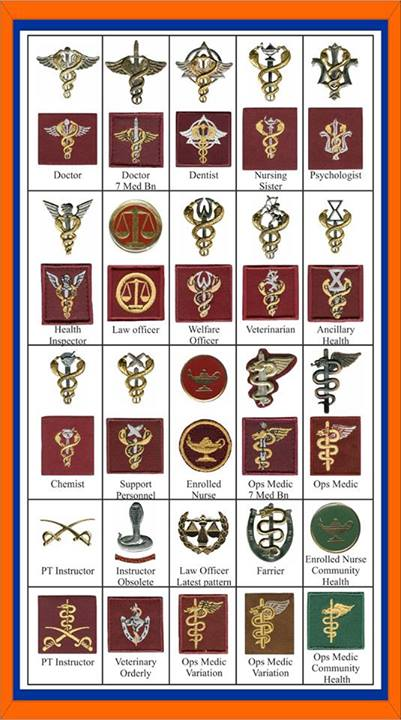 Magnificent 9417 Sa Military Health Services Operational Medic Badge Dw1 72 37 Download Free Architecture Designs Scobabritishbridgeorg